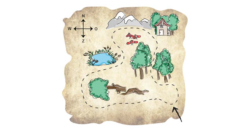 speurtocht door de bossen, familie activiteit, buiten activiteit, drenthe